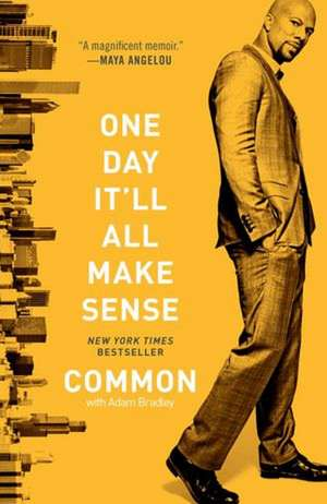 One Day It'll All Make Sense de  Common