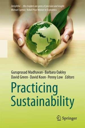 Practicing Sustainability de Guru Madhavan
