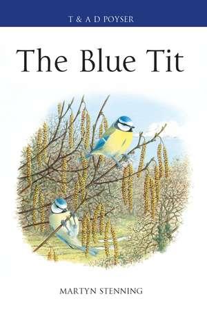 The Blue Tit