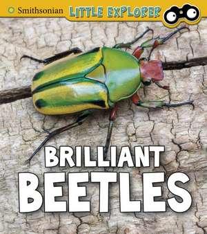 Brilliant Beetles de Melissa Higgins