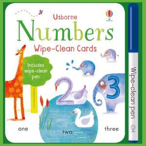 Brooks, F: Wipe-Clean Number Cards de Felicity Brooks