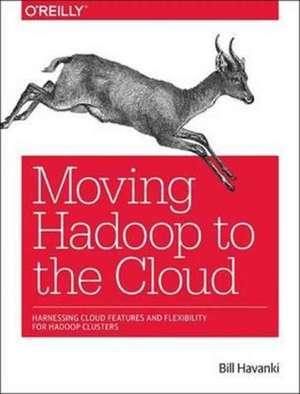 Moving Hadoop in the Cloud
