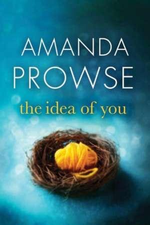 The Idea of You de Amanda Prowse