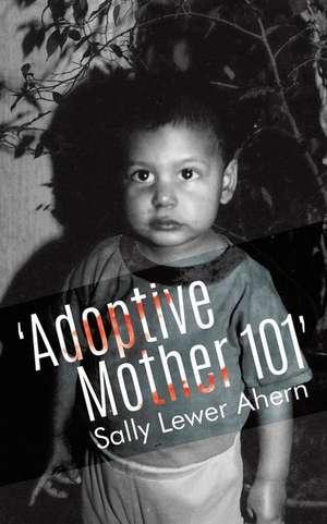 'Adoptive Mother 101' de Sally Lewer Ahern