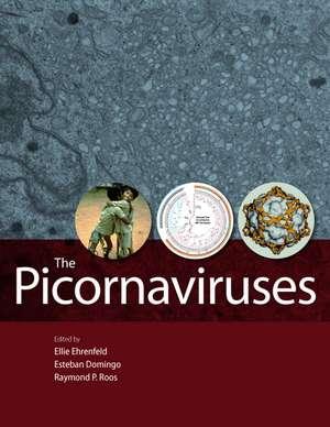 The Picornaviruses