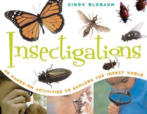 Insectigations: 40 Hands-On Activities to Explore the Insect World imagine