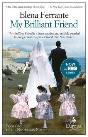 My Brilliant Friend de Elena Ferrante