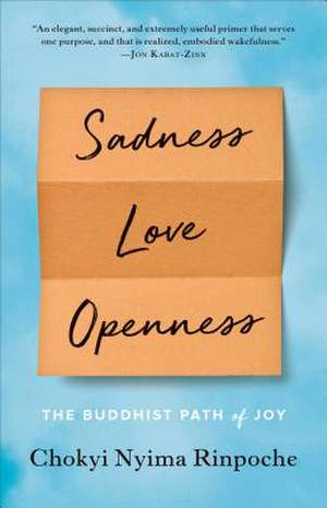 Sadness, Love, Openness de Chokyi Nyima Rinpoche