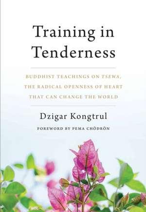 Training in Tenderness de Dzigar Kongtrul