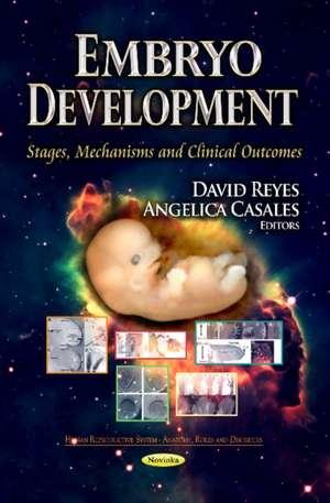 Embryo Development imagine