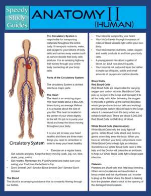 Anatomy II (Human) (Speedy Study Guide)