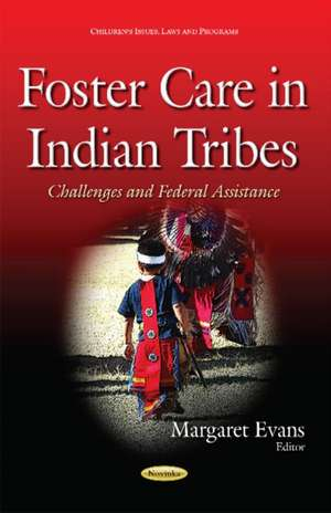 Foster Care in Indian Tribes imagine