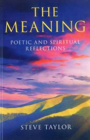 Meaning, The – Poetic and spiritual reflections de Steve Taylor
