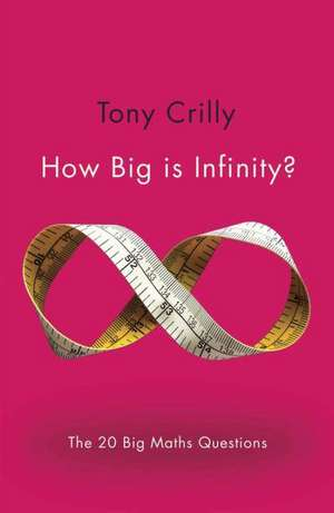 How Big Is Infinity?:  The 20 Big Maths Questions de Tony Crilly