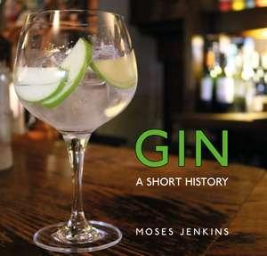 Gin: A Short History de Dr Moses Jenkins
