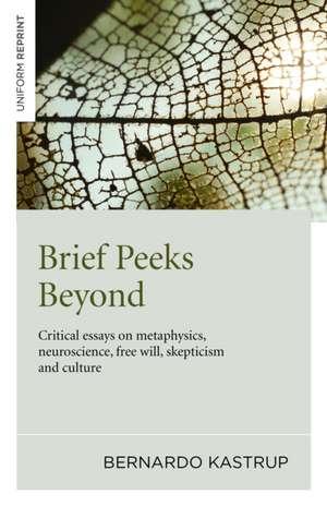 Brief Peeks Beyond