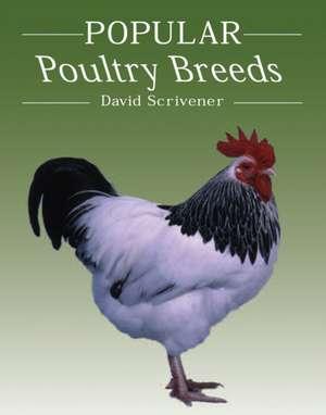 Popular Poultry Breeds imagine