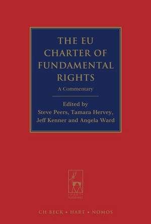 The EU Charter of Fundamental Rights imagine