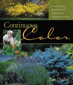Continuous Color imagine