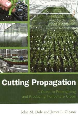 Cutting Propagation: A Guide To Propagating And Pr
