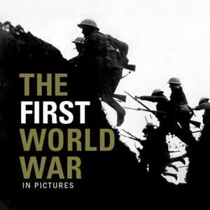 The First World War de  Ammonite Press