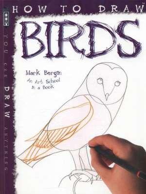 How to Draw Birds