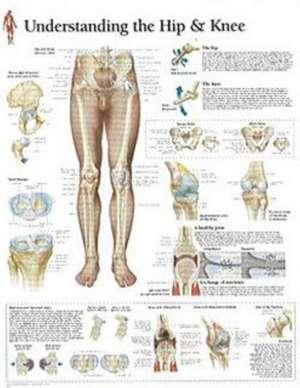 Understanding Hip and Knee de Scientific Publishing