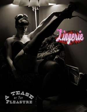 Lingerie:  A Tease or for Pleasure