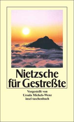 Nietzsche fuer Gestresste