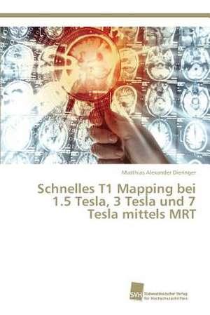 Schnelles T1 Mapping bei 1.5 Tesla, 3 Tesla und 7 Tesla mittels MRT