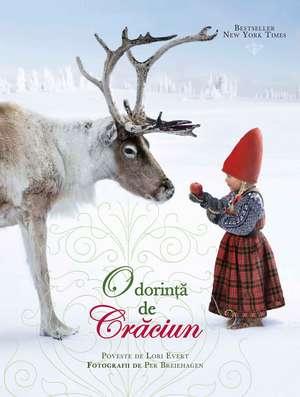 O dorință de Crăciun de Lori Evert