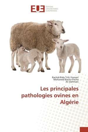 Les Principales Pathologies Ovines En Algerie