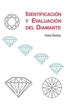 Identificacion y Evaluacion del Diamante