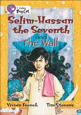 Selim-Hassan the Seventh and the Wall