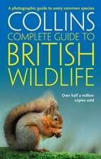 British Wildlife