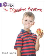 The Digestive System:  The Lost City
