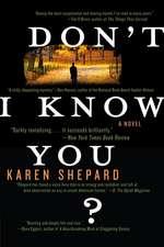 Don't I Know You?: A Novel