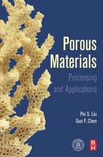 Porous Materials: Processing and Applications