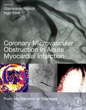 Coronary Microvascular Obstruction in Acute Myocardial Infarction: From Mechanisms to Treatment