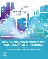 New Dimensions in Production and Utilization of Hydrogen
