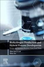 Biohydrogen Production and Hybrid Process Development