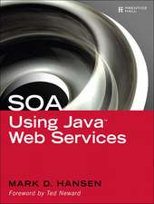 SOA Using Java Web Services:  How to Get Real Business Value Out of Technology