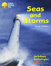 Oxford Reading Tree: Levels 8-11: Jackdaws: Pack 2: Seas and Storms