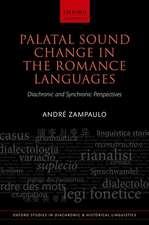Palatal Sound Change in the Romance Languages