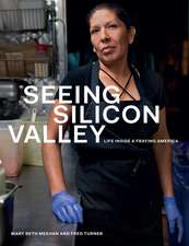 Seeing Silicon Valley