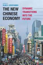 The New Chinese Economy: Dynamic Transitions into the Future