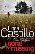 Castillo, L: Gone Missing