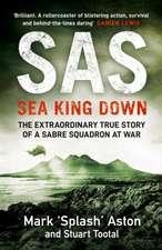 SAS: Sea King Down