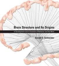 Brain Structure and Its Origins – Function, Evolution, Development