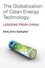 The Globalization of Clean Energy Technology – Lessons from China